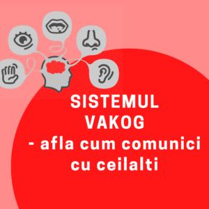 vakog - sisteme reprezentare nlp